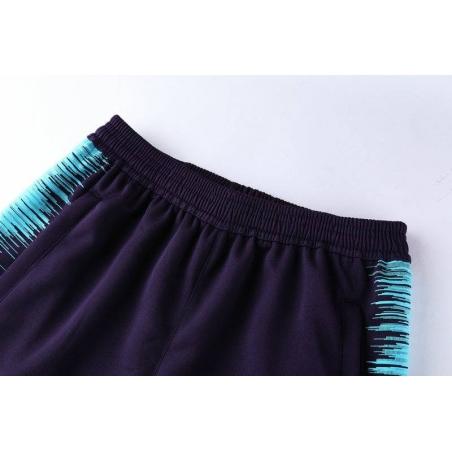 Тренировочные штаны барселоны темно синие ментоловые  месси